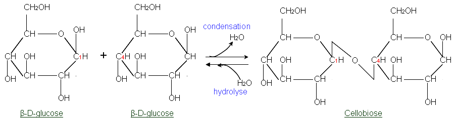 Condensation To Form Pyrimidine Ring