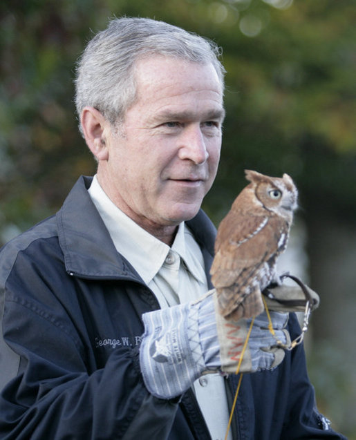 Image Result For George W Bush