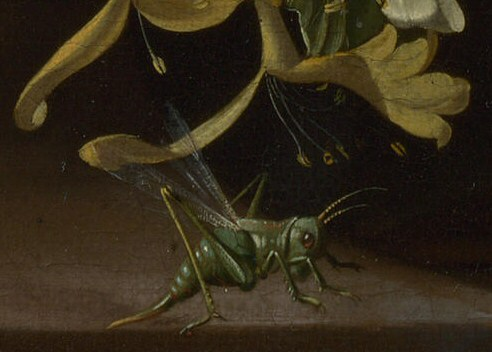 Grasshopper detail in Rachel Ruysch Flowers in a Vase c 1685.jpg