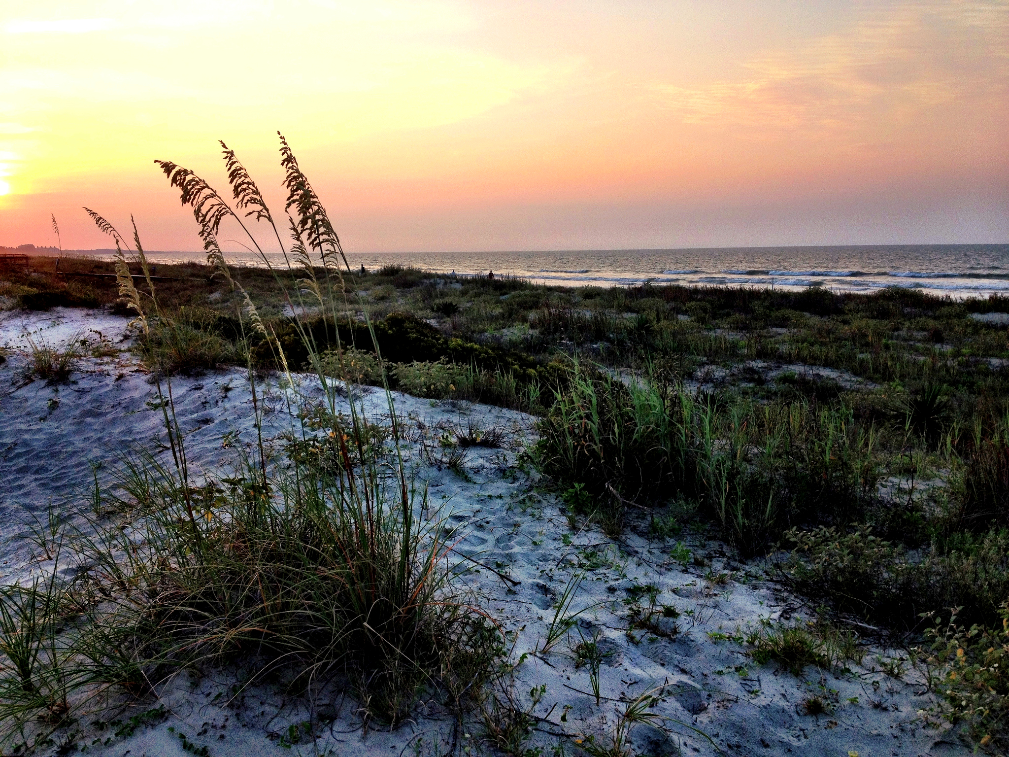 Best Places to Eat in Kiawah Island, SC