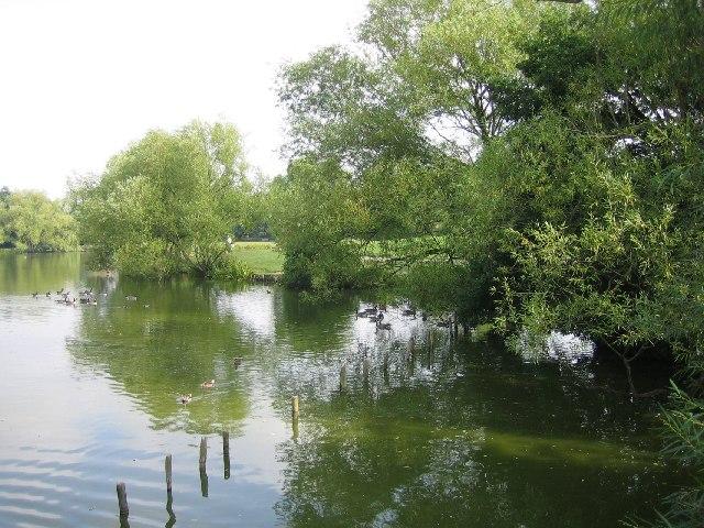 Lake Meadows, Billericay - geograph.org.uk - 48246