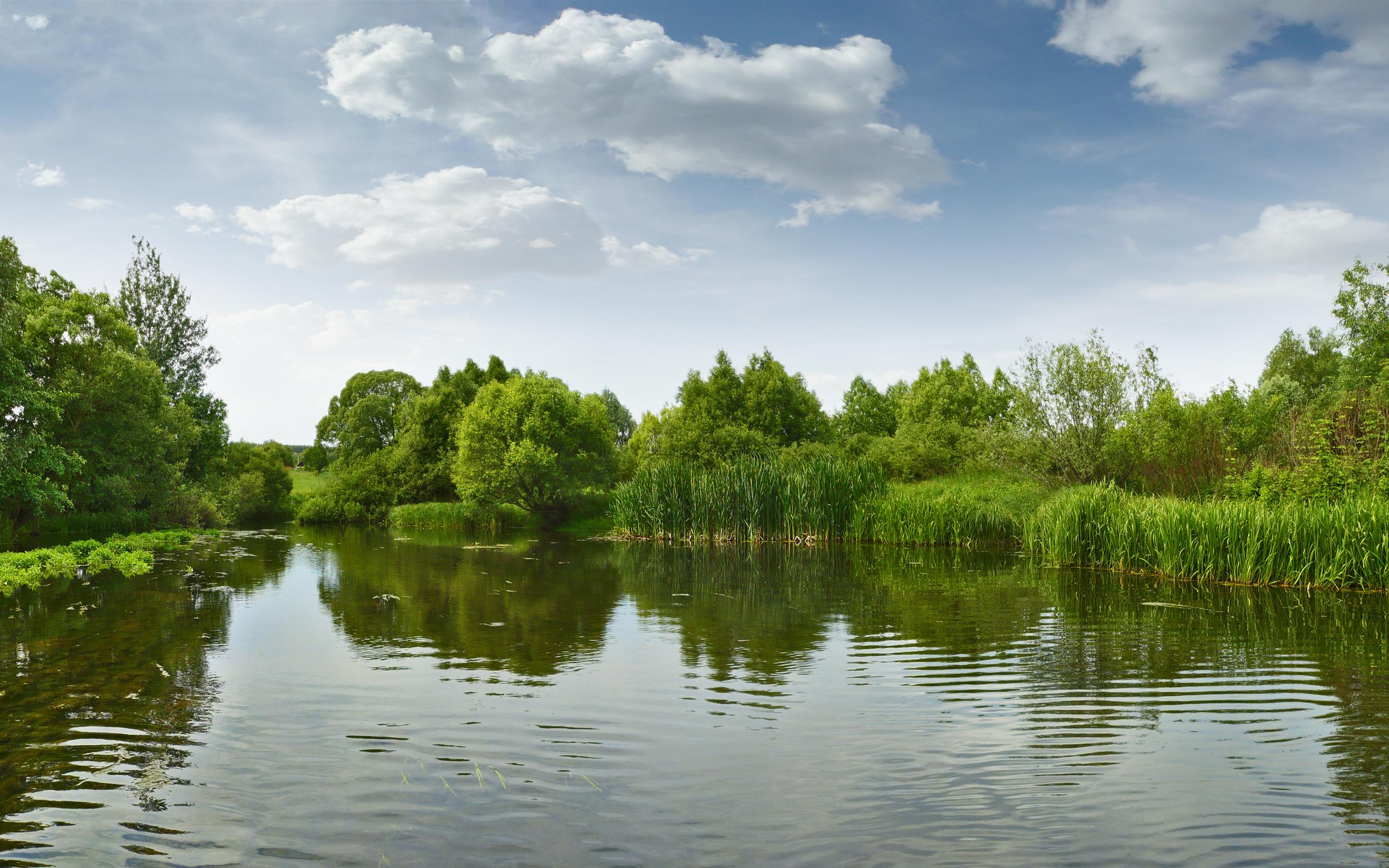 Прогноз погоды на 8 июня: подъём уровня воды ожидается на реках двух областей