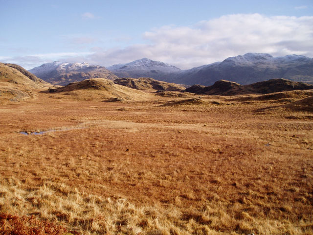 Marshy ground above Eskdale - geograph.org.uk - 126336