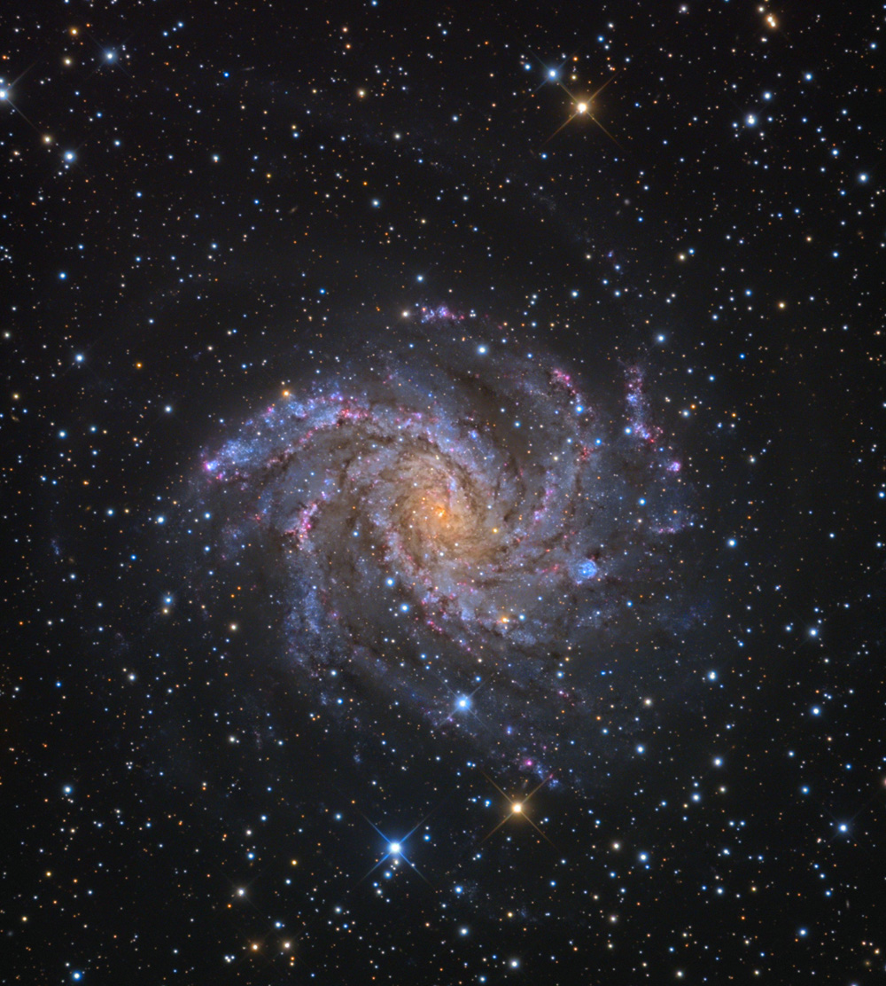 https://upload.wikimedia.org/wikipedia/commons/5/5e/NGC6946_Galaxy_from_the_Mount_Lemmon_SkyCenter_Schulman_Telescope_courtesy_Adam_Block.jpg