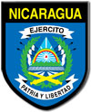 Air warfare branch of Nicaragua