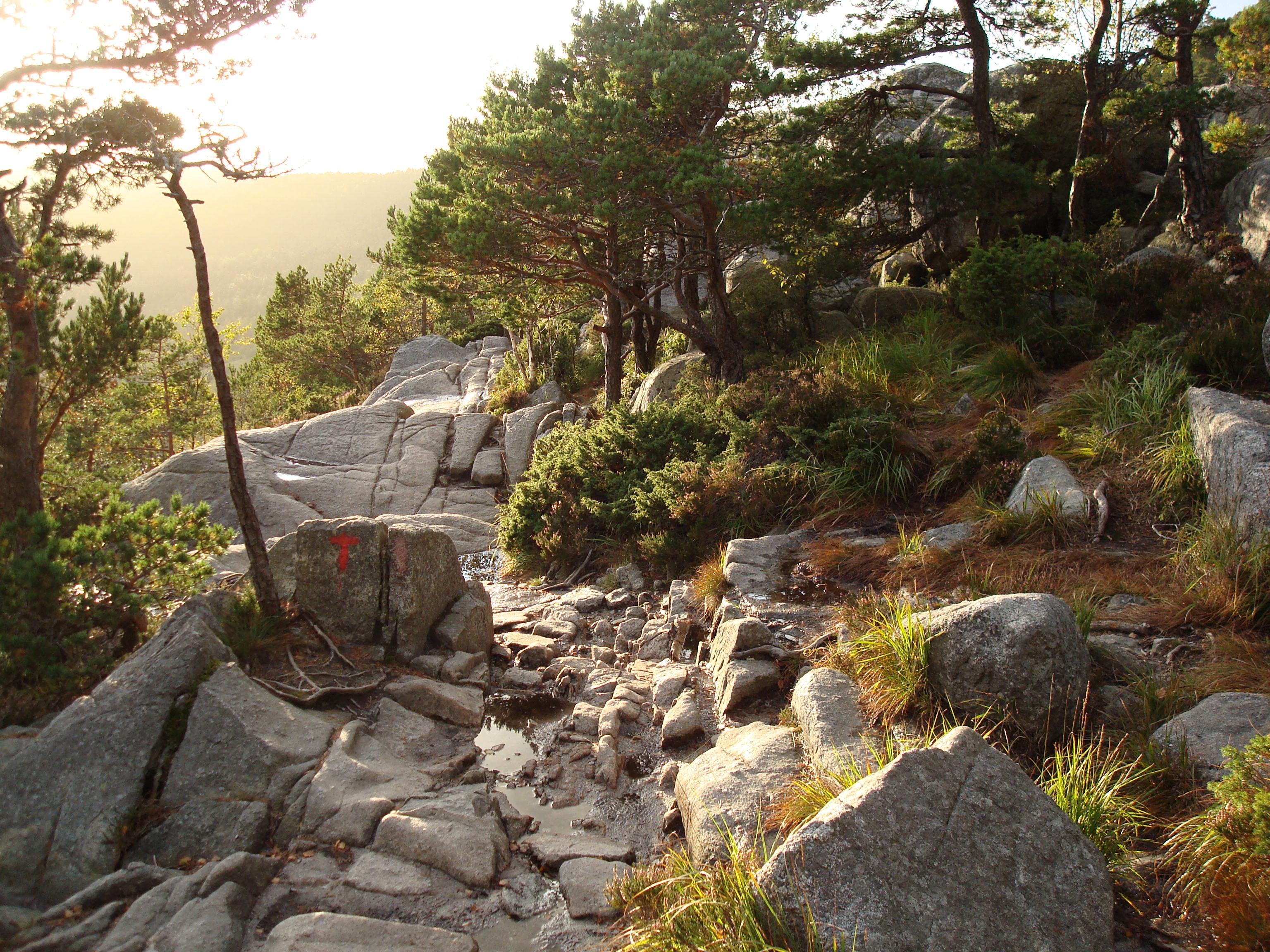 Preikestolen_hiking_trail.jpg