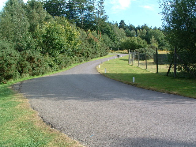 Road leading into Rookesbury Park - geograph.org.uk - 929273