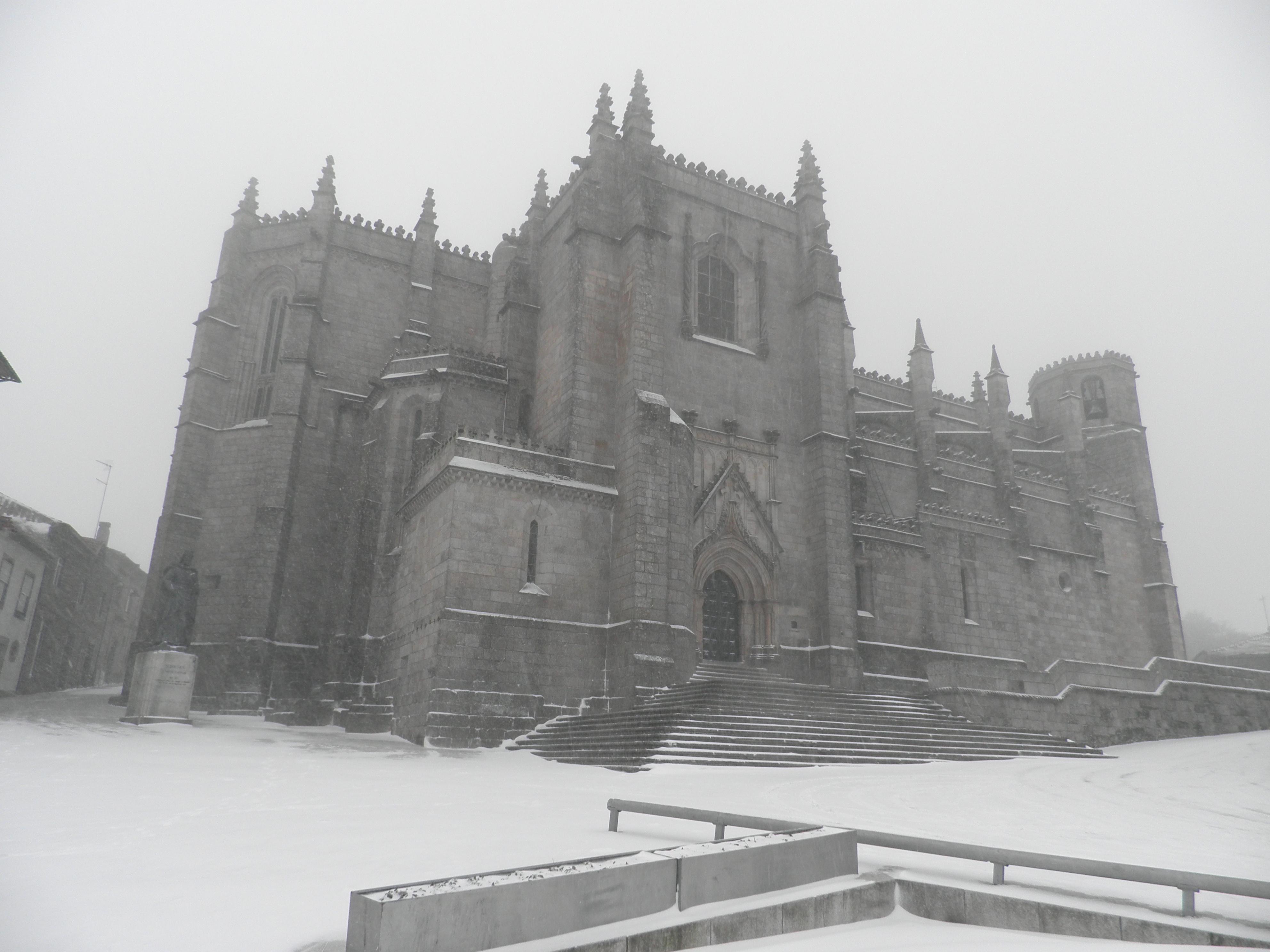 Resultado de imagem para guarda neve