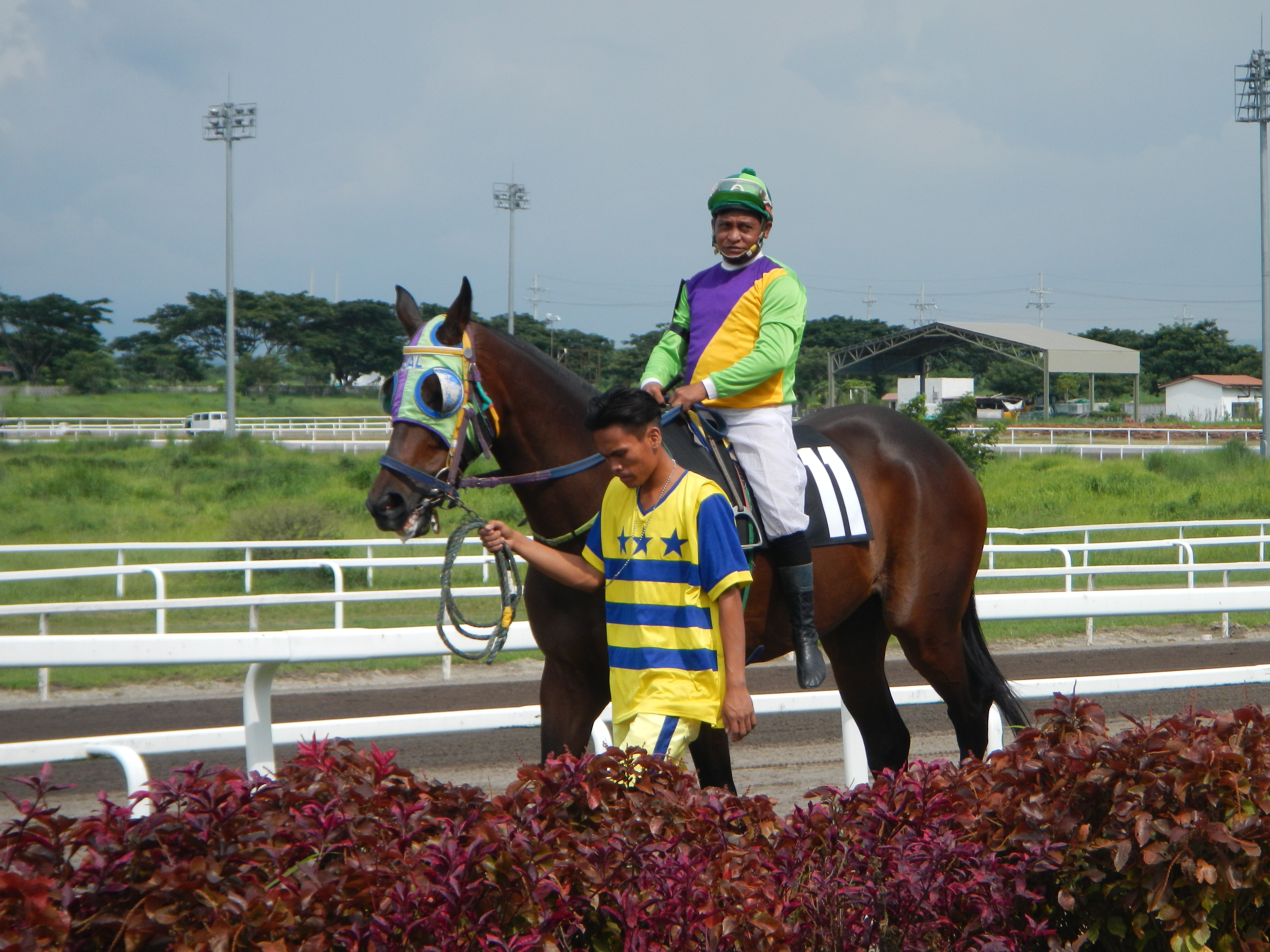 Horse race betting philippines star 60 seconds binary options strategy forum