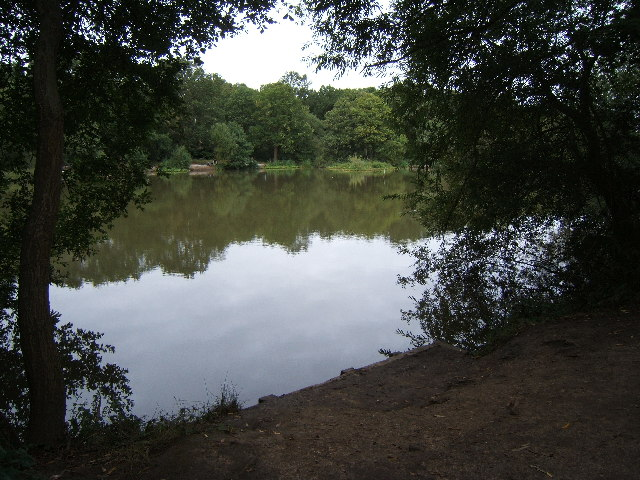 Stew Pond, Epsom Common - geograph.org.uk - 43643