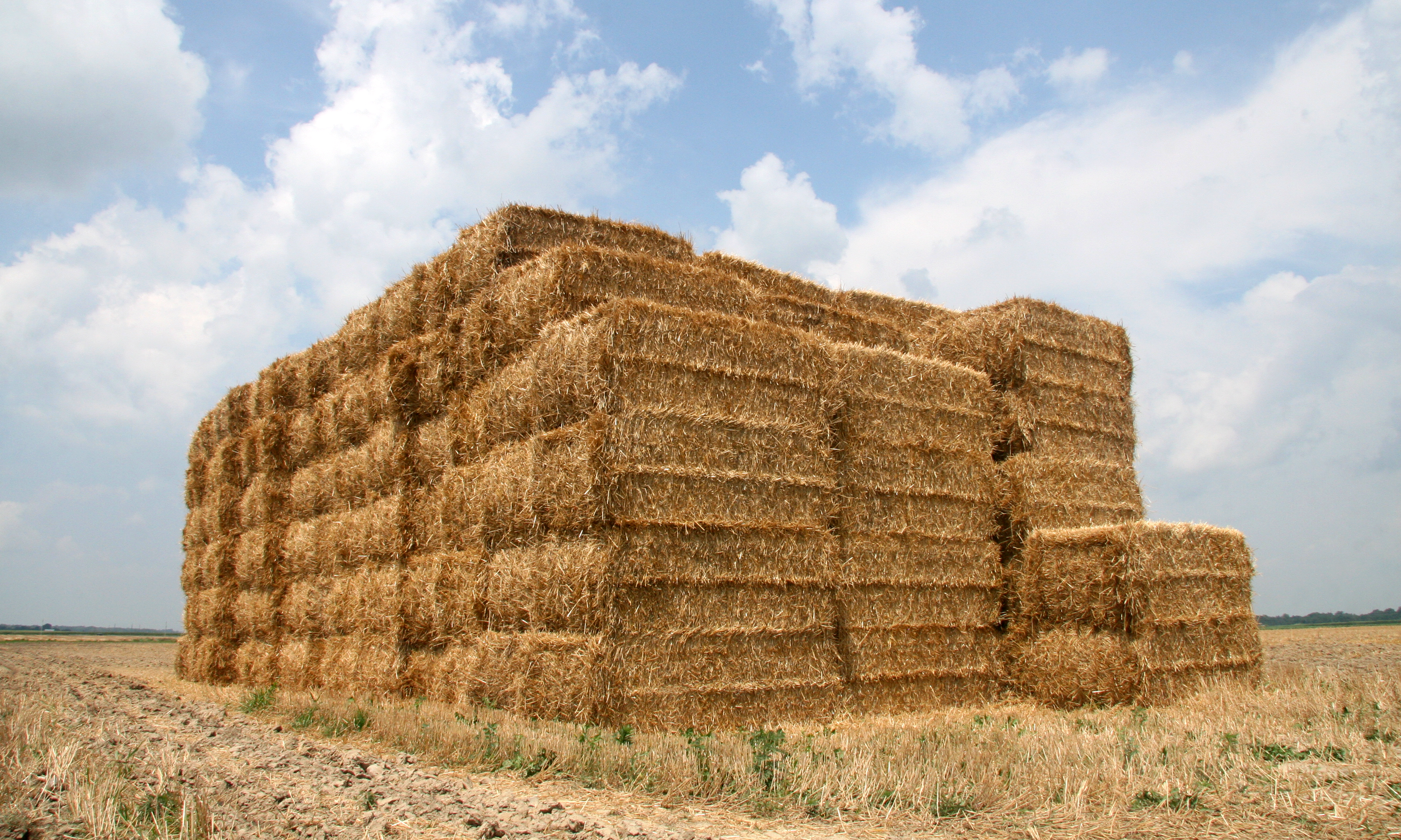 Filestraw Bales In Tippecanoe County Indianapng Wikimedia Commons - Bales
