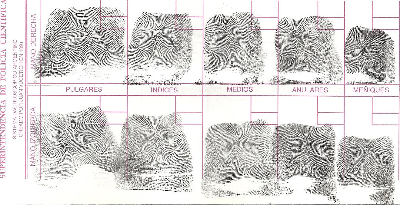 File:Ten fingerprints - 01.jpg - Wikimedia Commons