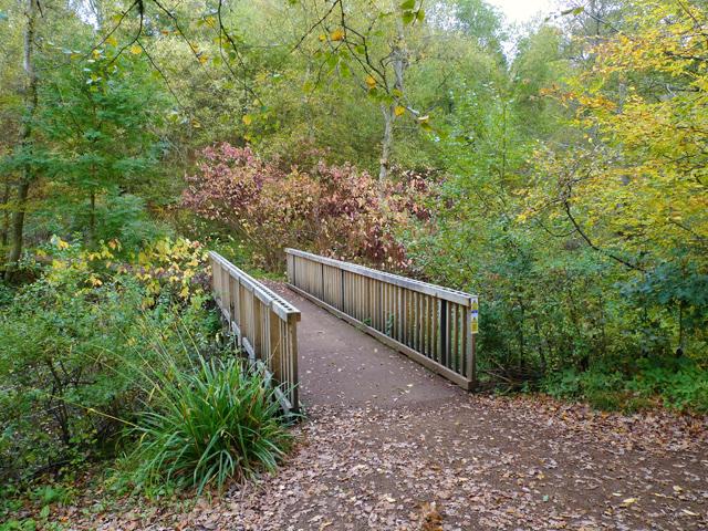 The Footbridge, Stockgrove Park - geograph.org.uk - 1551464