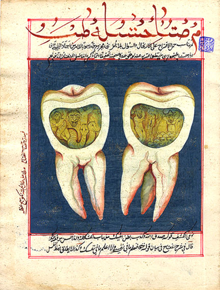 People once used henbane to cure toothache, when they believed a worm inside the tooth caused the pain.