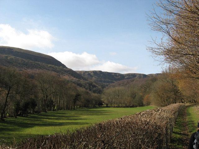 View towards Craig y Cilau - geograph.org.uk - 1765268