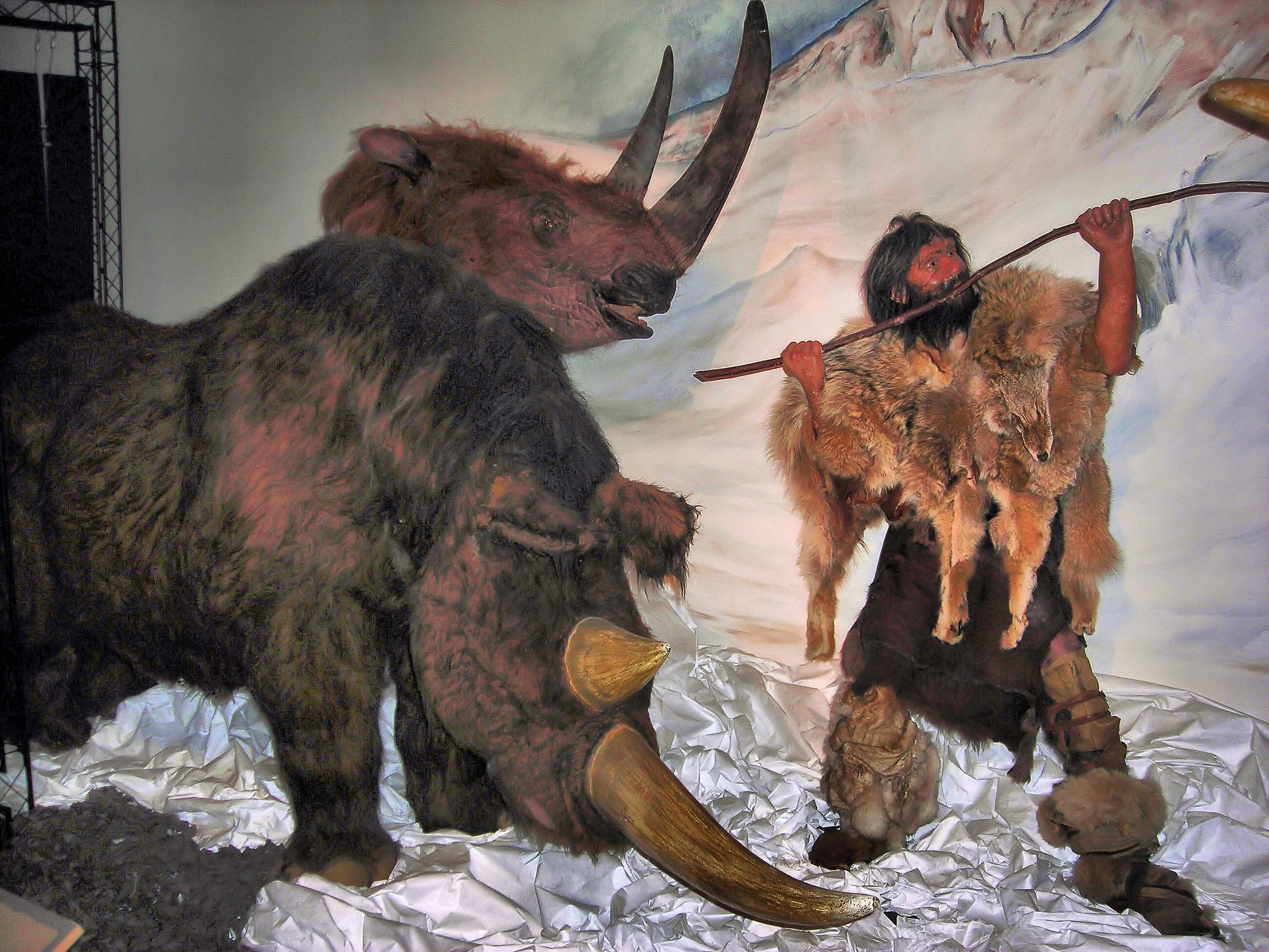 file woolly rhinoceros hunt
