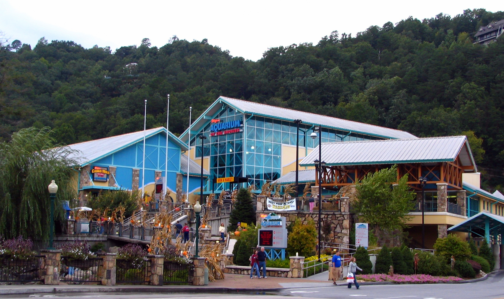 Gatlinburg Hotels Downtown Parkway