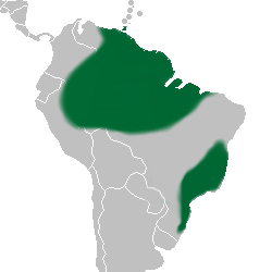 Bifrenaria distribution map.png