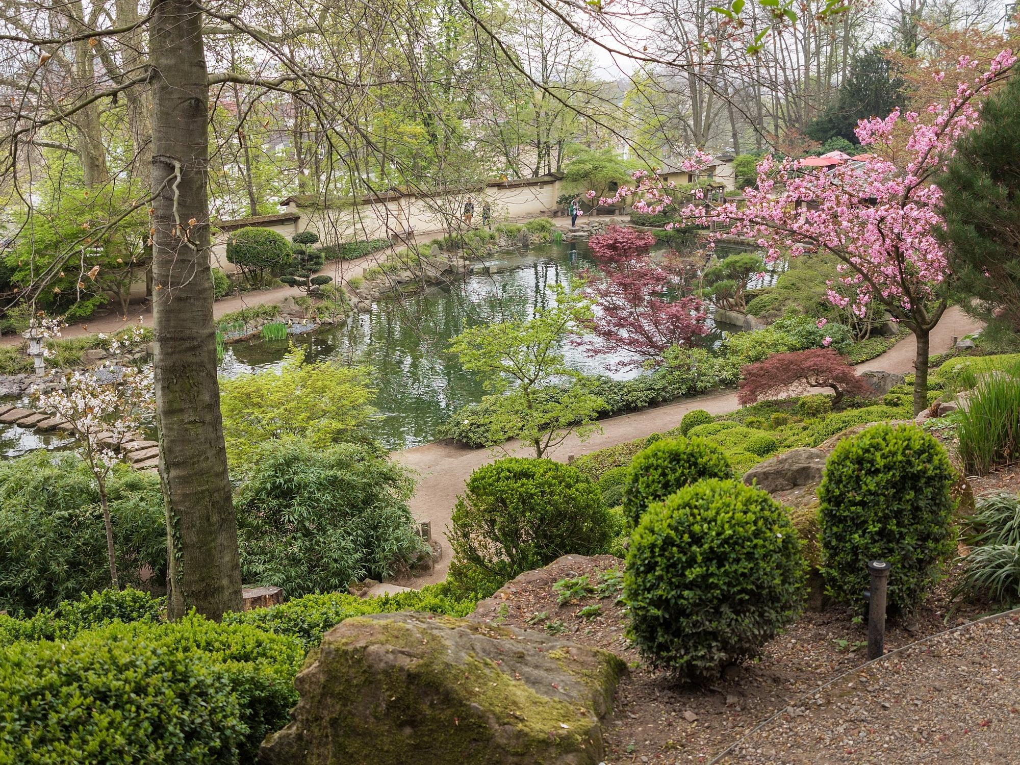 Garten teich panoramio photo of garten teich schwimmteich for Teich garten