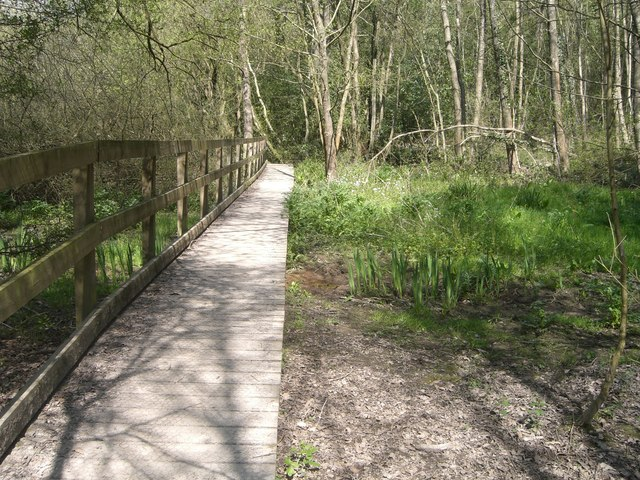 Boardwalk - geograph.org.uk - 406178