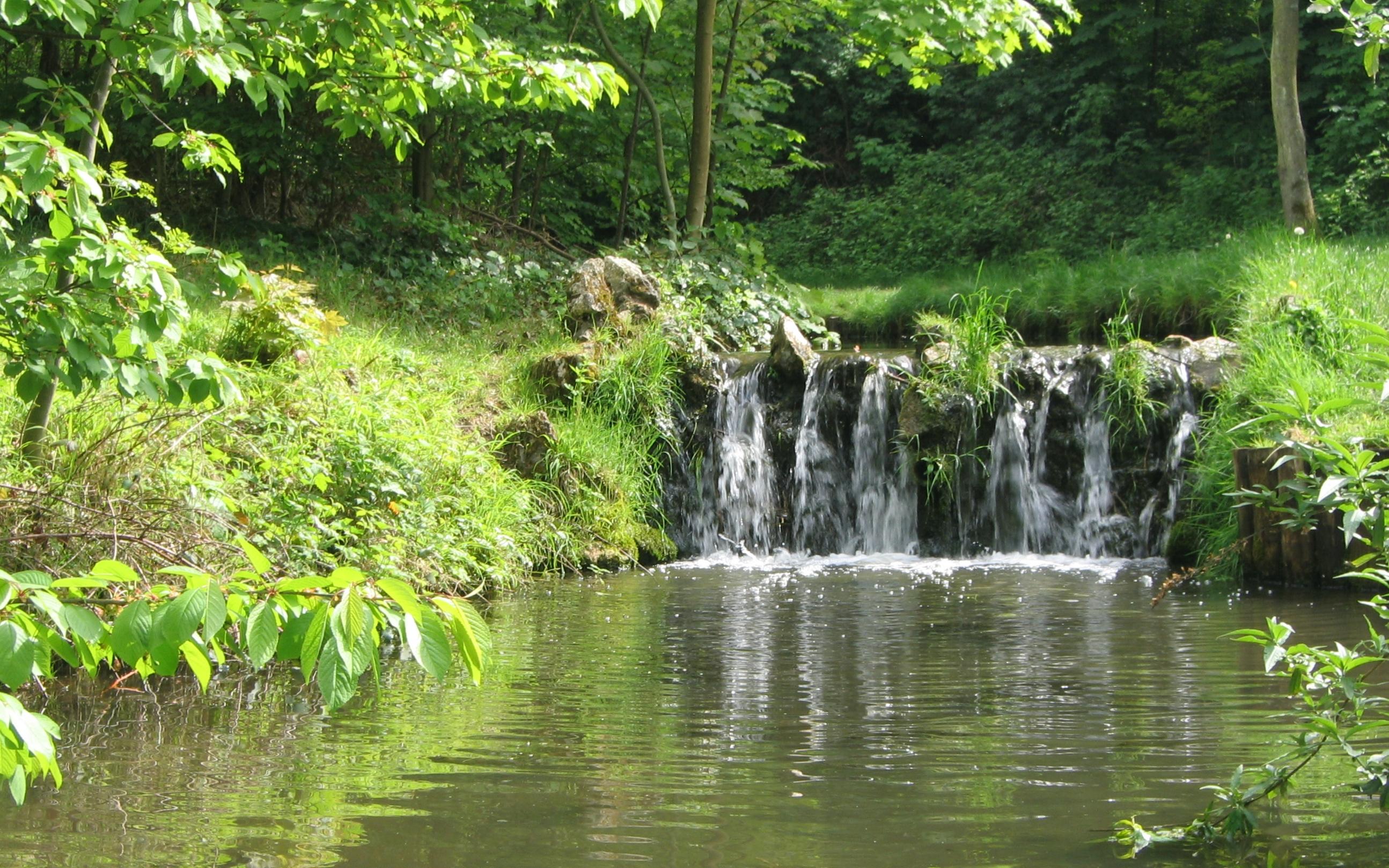 Fichier:Bois de Vincennes PRINTEMPS 2009 - 005.JPG - Wikipédia