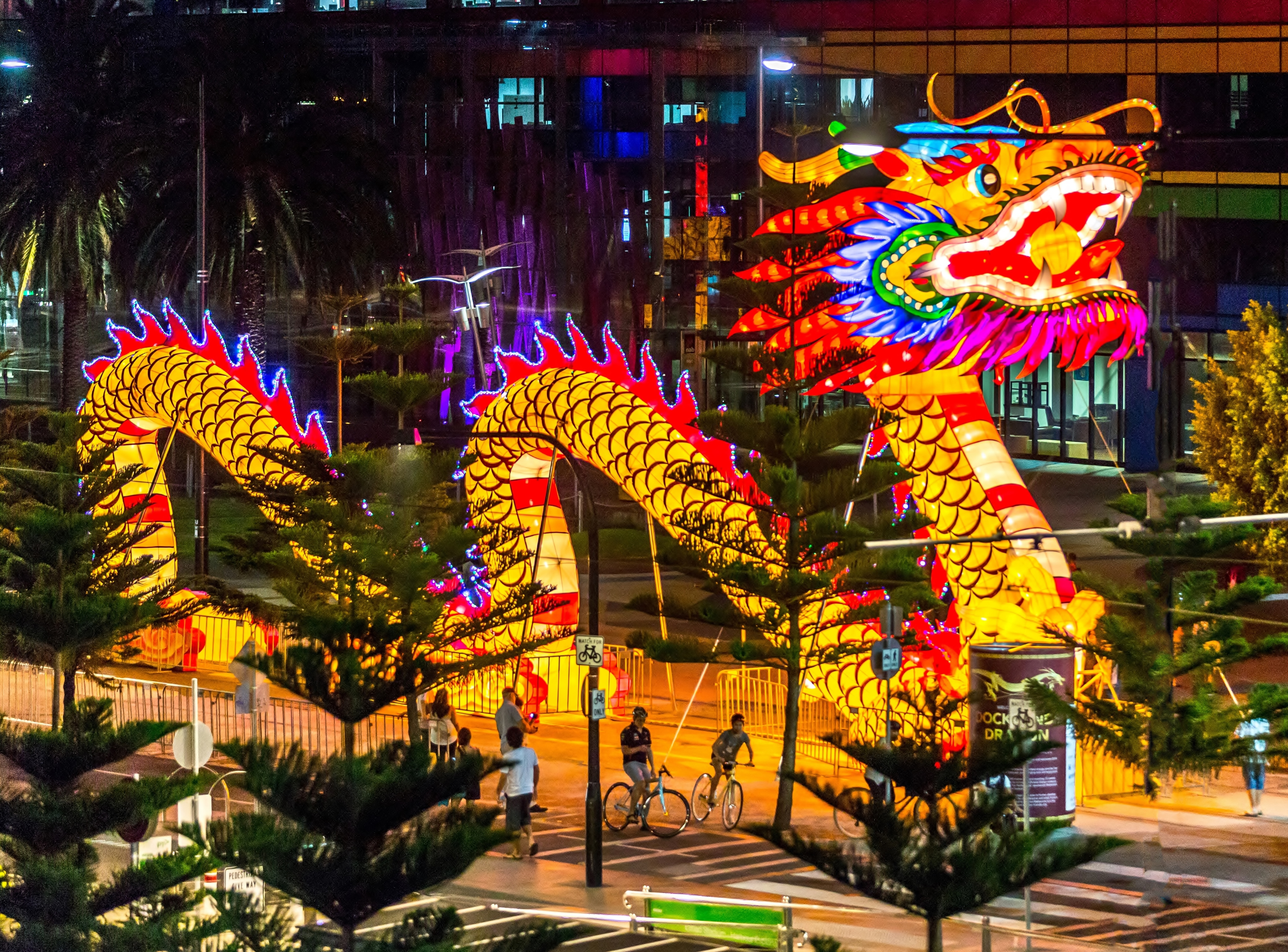 filechinese new year dragon 2014jpg - What Is Chinese New Year
