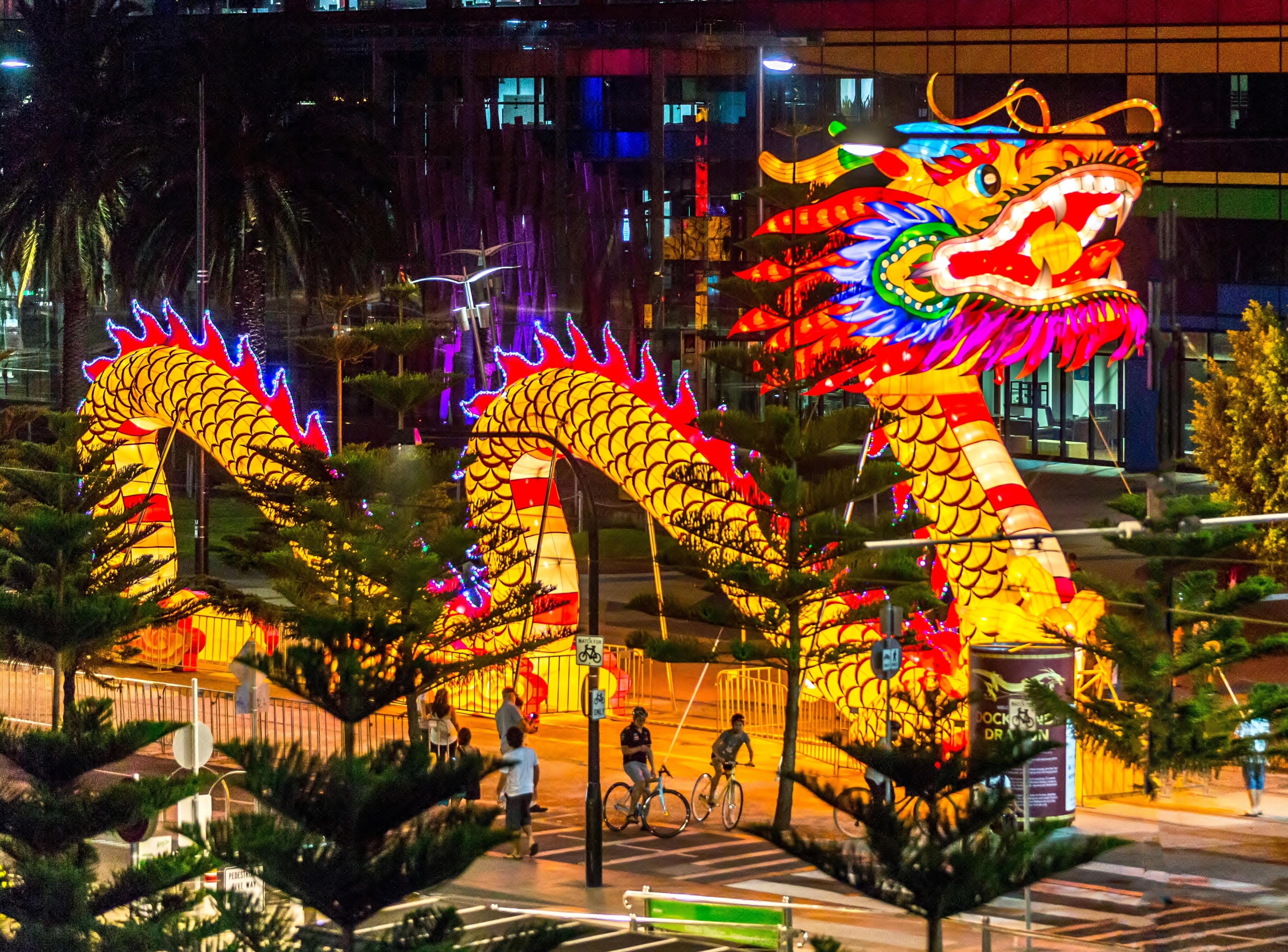 File:Chinese new year dragon 2014.jpg - Wikimedia Commons