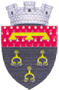 CoA Durlești.png