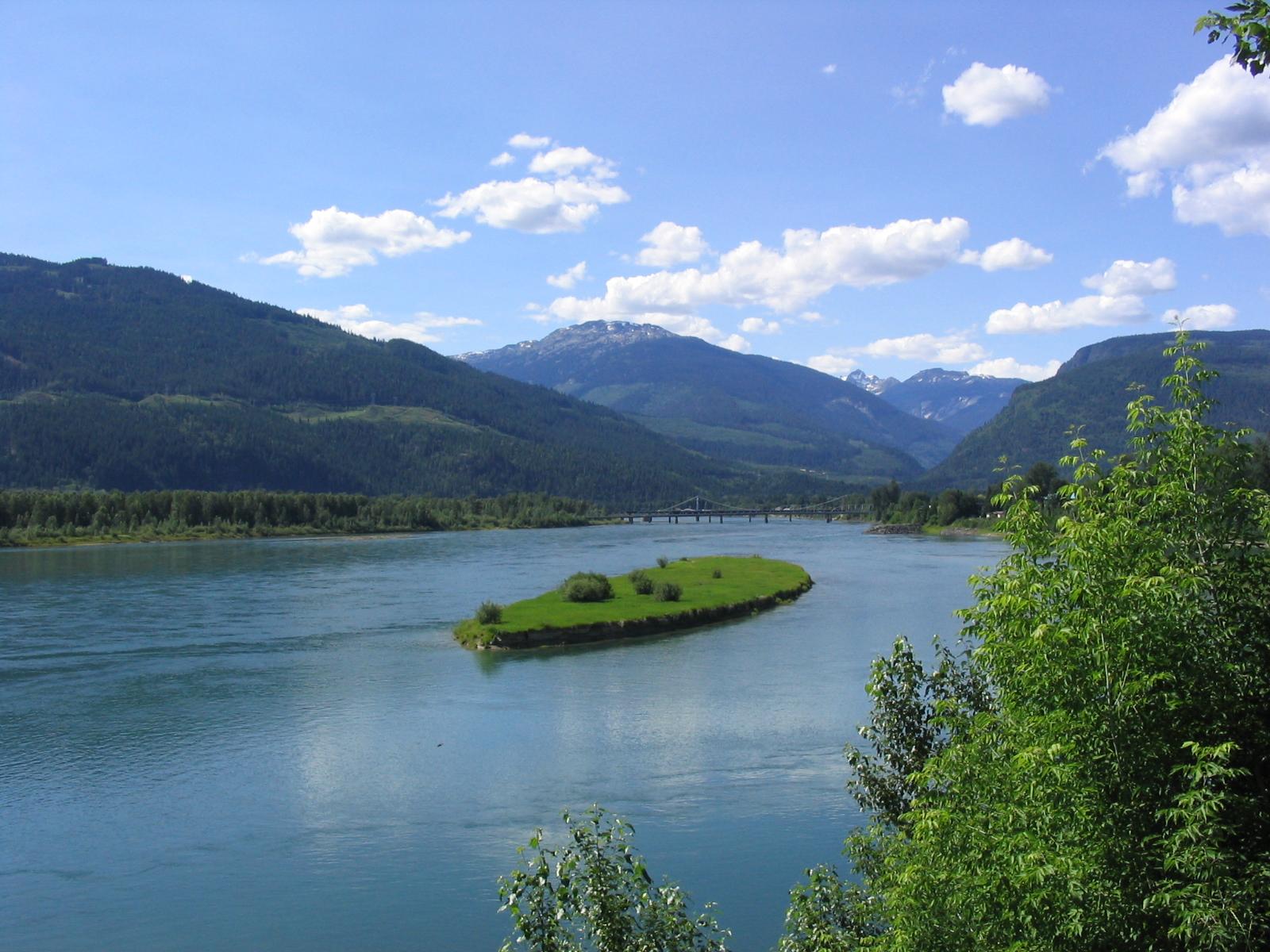 生物 巨大 カナダ 湖