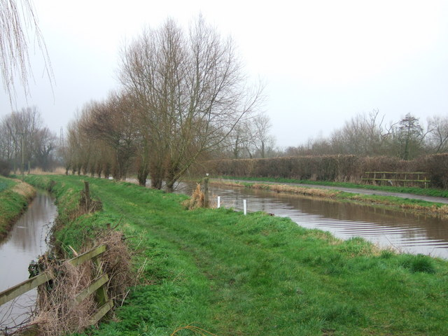 Drain and canal at Fordgate - geograph.org.uk - 344255