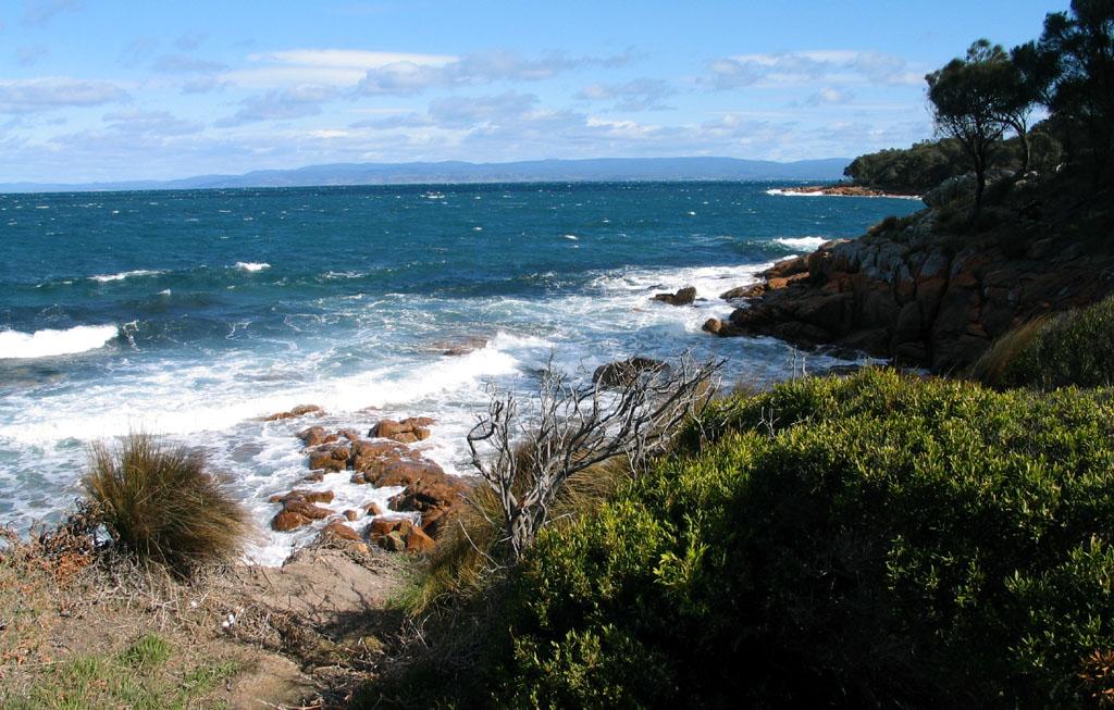 Freycinet Coles Bay Richtung Great Oyster Bay.jpg