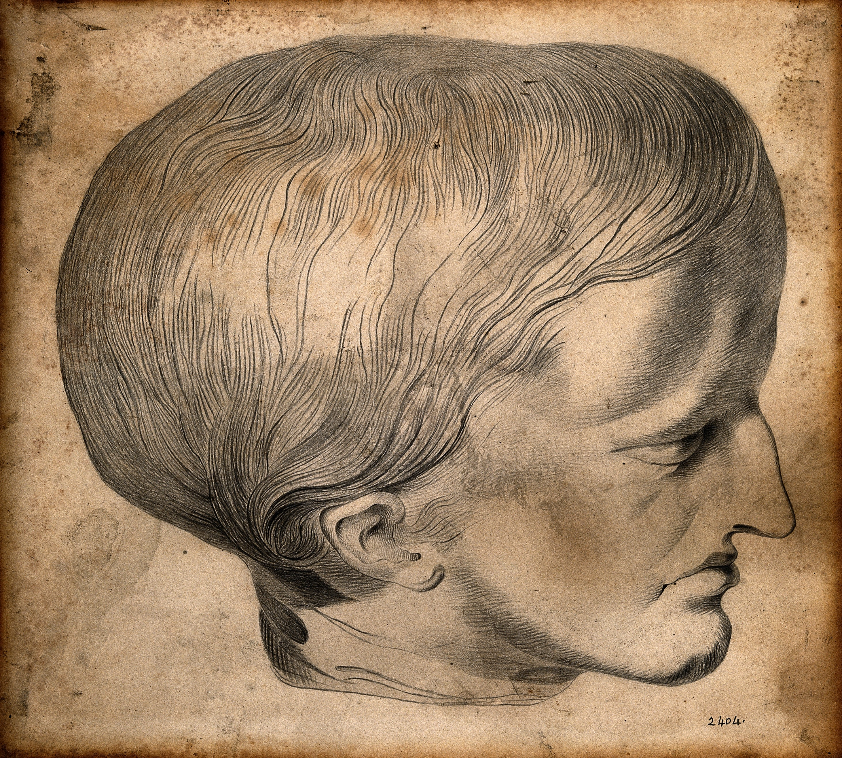 file head of james cardinal a man with a deformed skull drawing