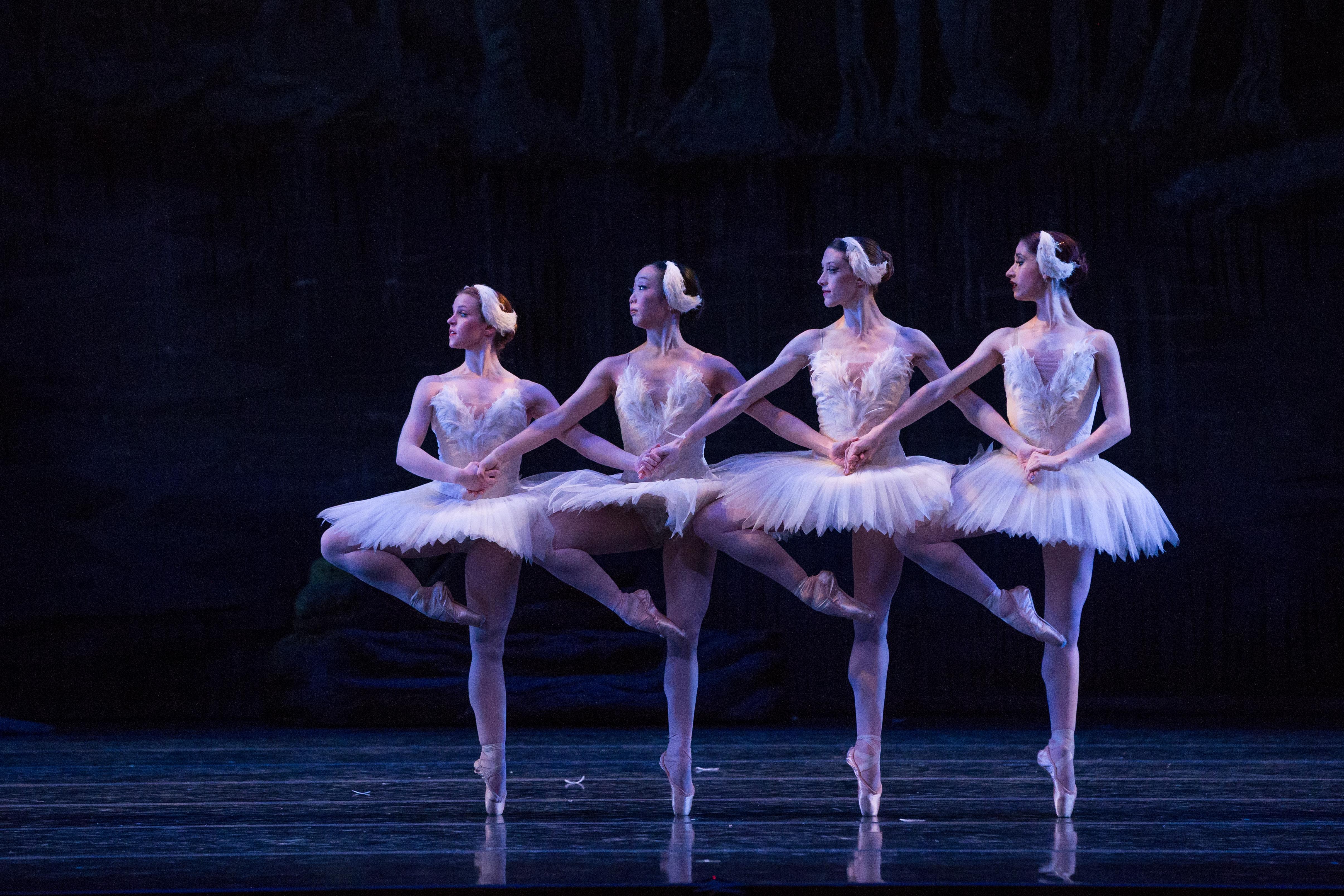 Danse des petits cygnes - Wikipedia