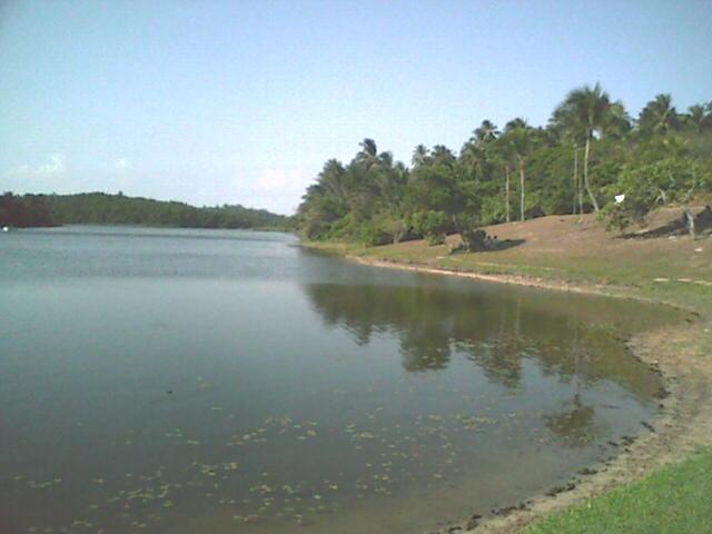 Pituaçu