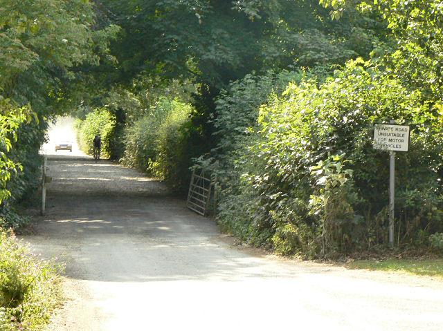 Lane at Holme Pierrepont - geograph.org.uk - 1385939