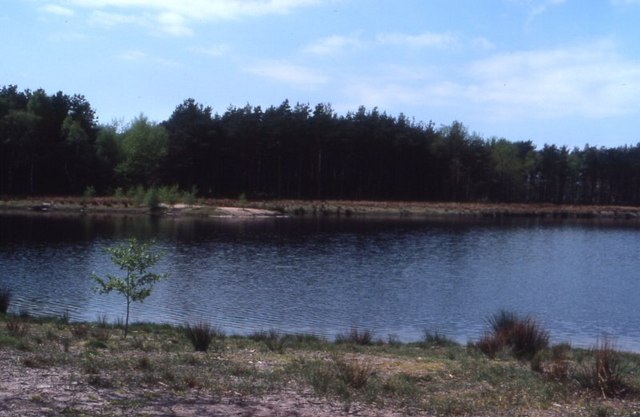 Mere Sands Wood - geograph.org.uk - 332507
