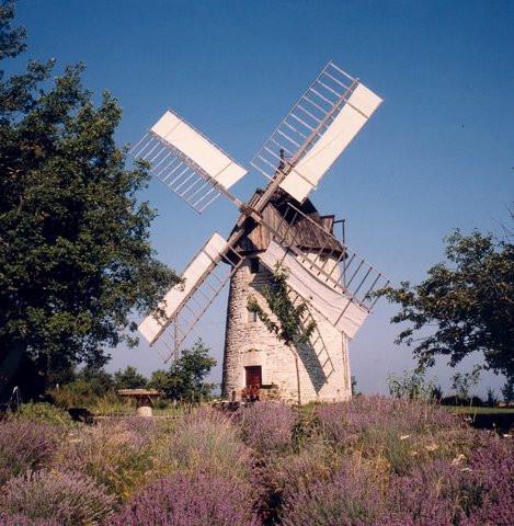 Moulin vent de saint chels wikip dia - Le port du moulin champtoceaux ...