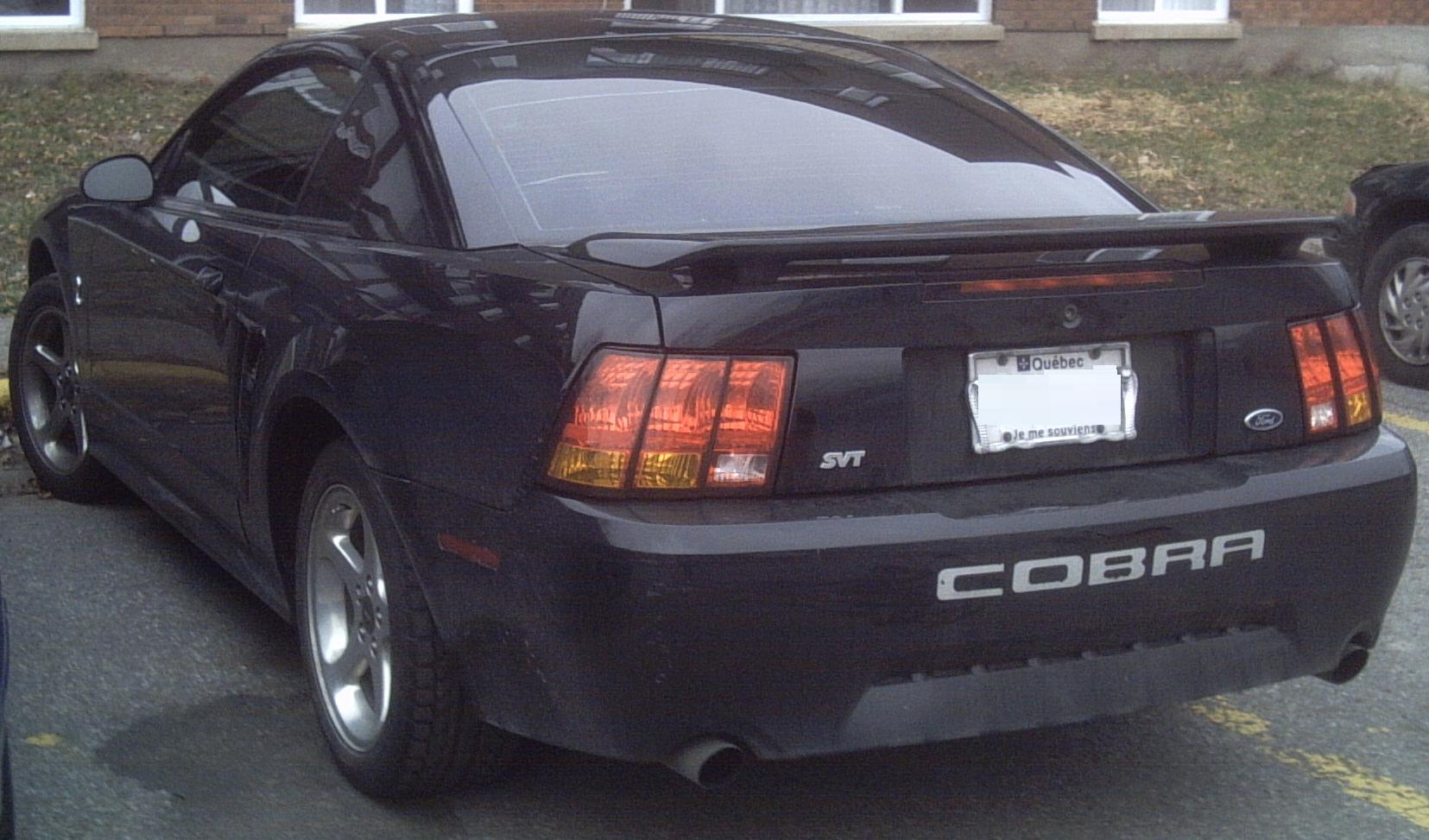 Cobra bumper and wing? - Forums at Modded Mustangs