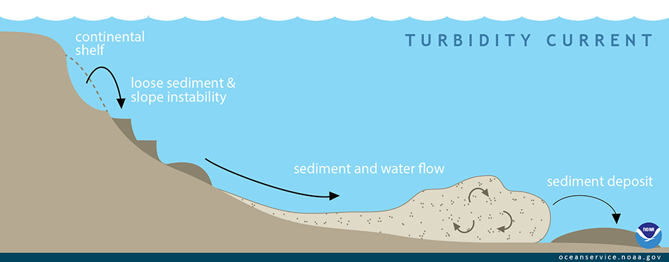 How Fast Can A Turbidite Bed Form