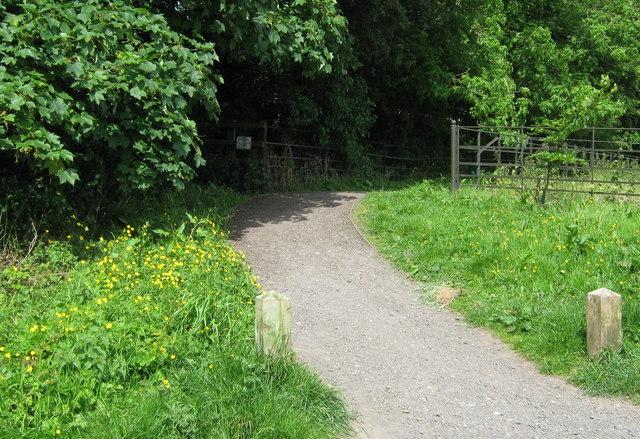 Path in Cuerdon Valley Park - geograph.org.uk - 1385043