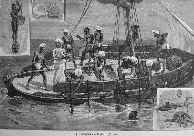 File:Perlenfischerei.jpg