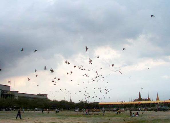 File:Sanam Luang.jpg