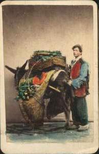 File:Sommer, Giorgio (1834-1914) - Venditore ambulante.jpg
