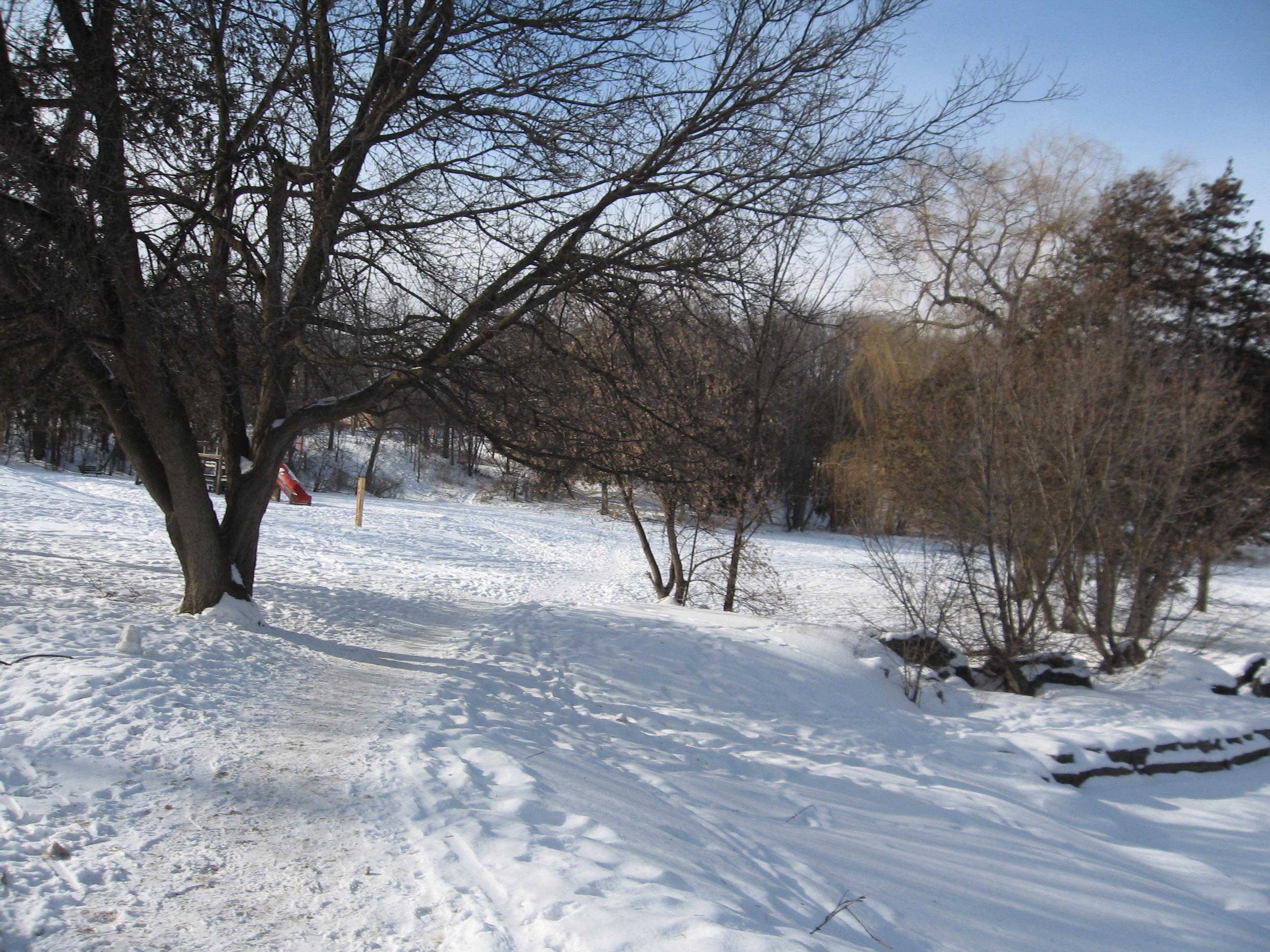 Trans Canada Trail Mont Tremblant Snow Shoe