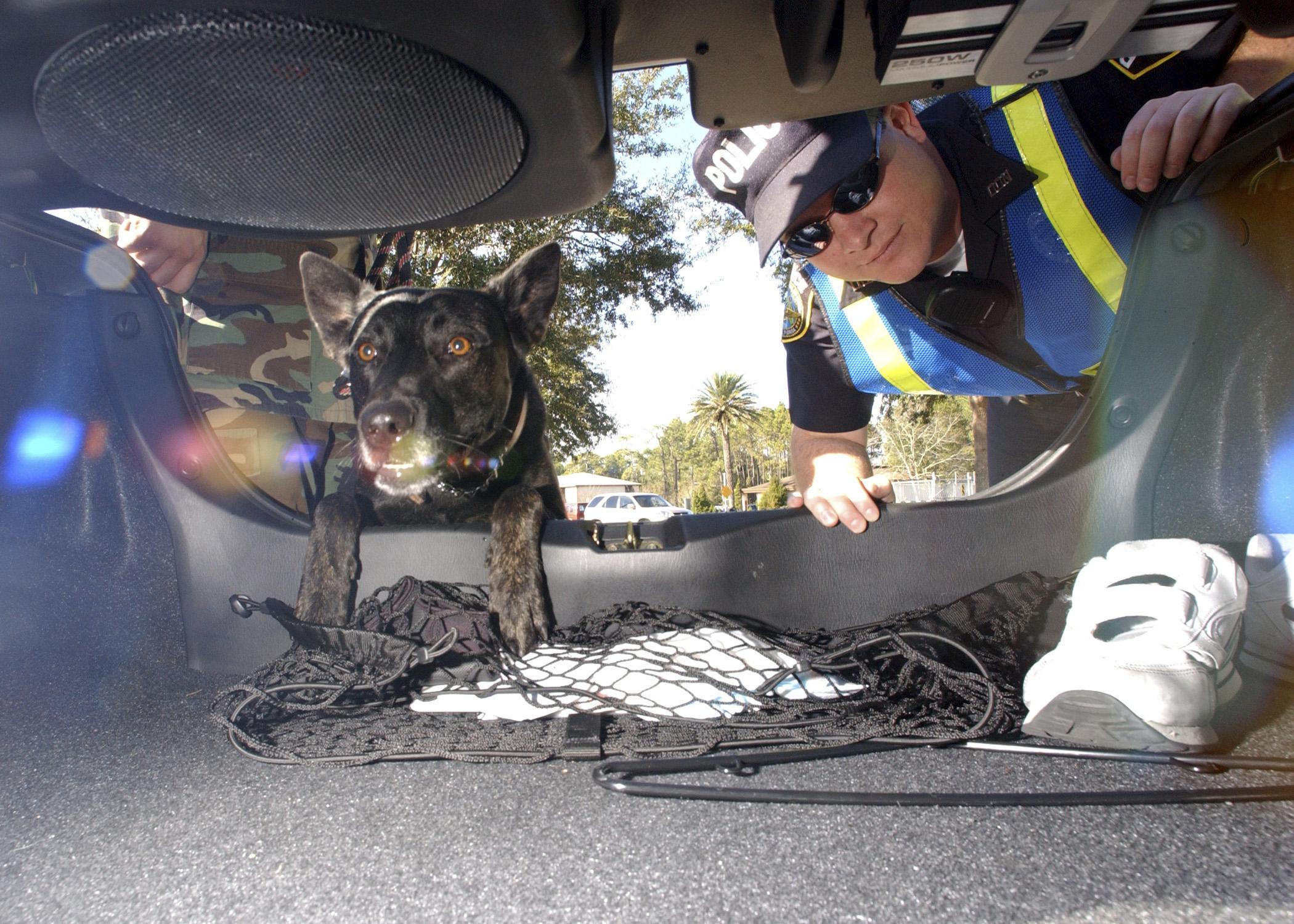 Under vehicle inspection - Wikipedia