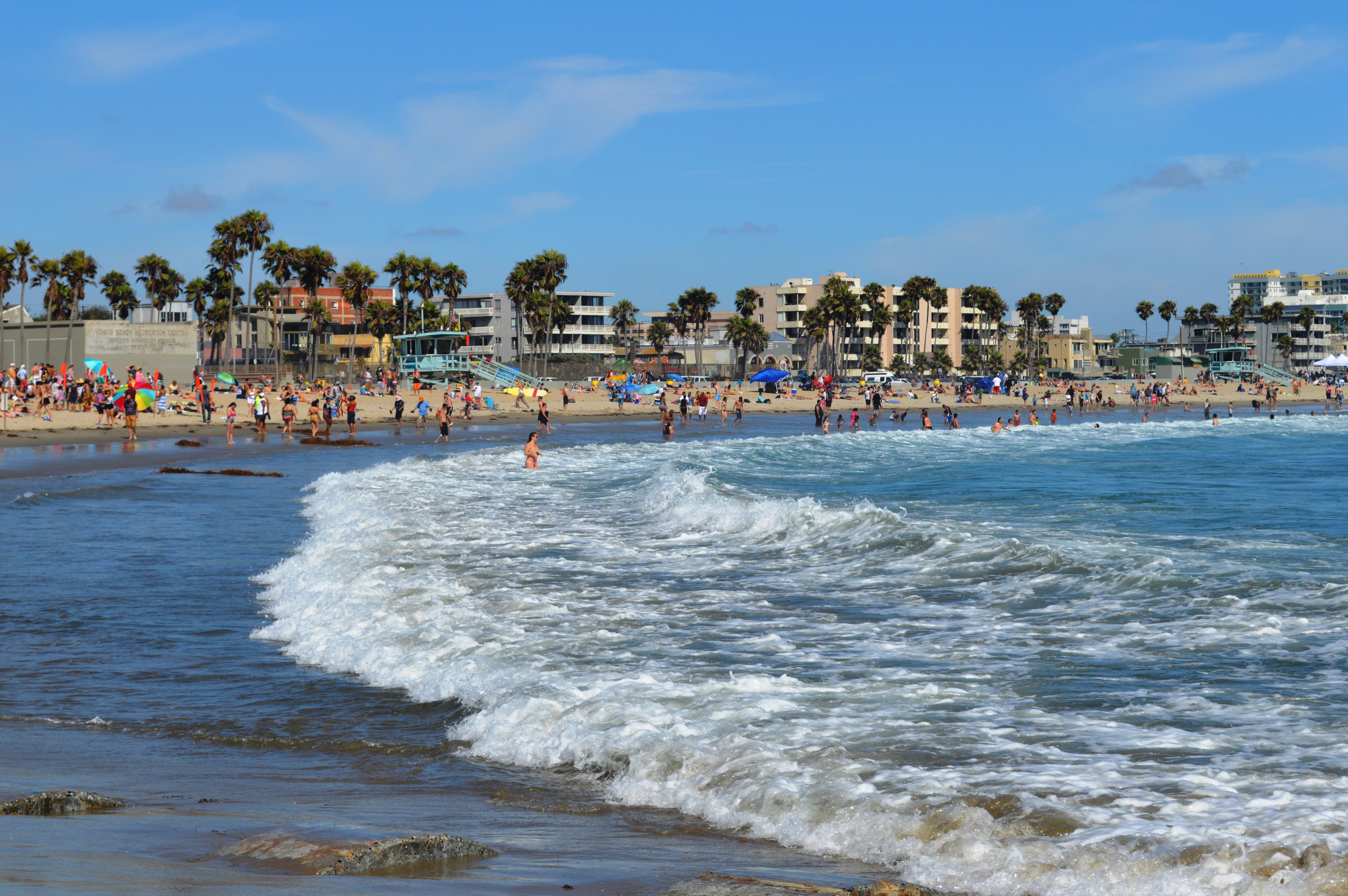 Venice Beach Florida Marina