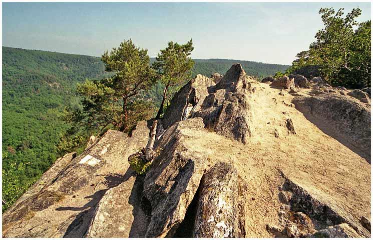 Sealsfieldův kámen