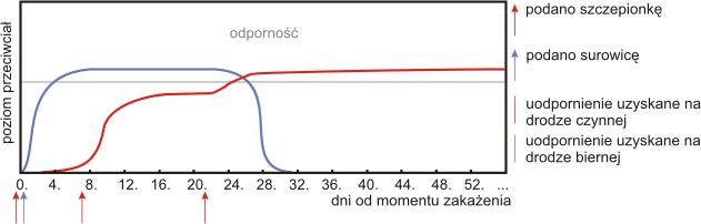 Połączenie dwuch metod leczenia