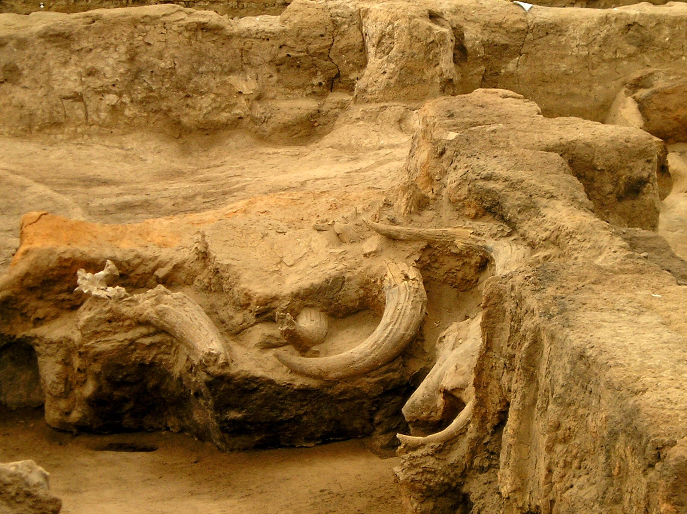 File:Çatalhöyük view 7.jpg - Wikimedia Commons