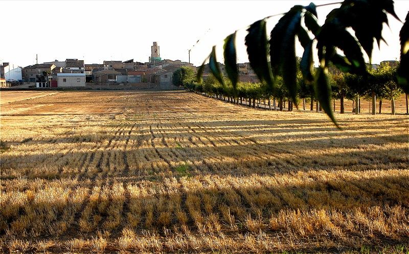 Alcampell (kommun i Spanien)